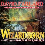 Wizardborn by  David Farland audiobook