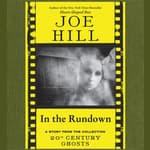In the Rundown by  Joe Hill audiobook