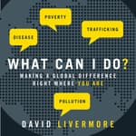 What Can I Do? by  David Livermore audiobook