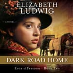 Dark Road Home by  Elizabeth Ludwig audiobook