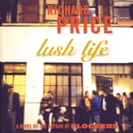 Lush Life by  Richard Price audiobook