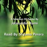 A Selection of Poems by Jalāl ad–Dīn ar–Rūmī by  Rumi audiobook