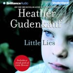Little Lies by  Heather Gudenkauf audiobook