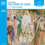 Story of Jesus by  David Angus audiobook