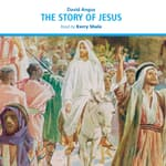 The Story of Jesus by  David Angus audiobook