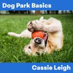 Dog Park Basics by  Cassie Leigh audiobook