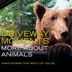 NPR Driveway Moments: More about Animals by  NPR audiobook