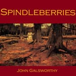 Spindleberries by  John Galsworthy audiobook