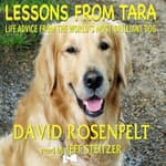 Lessons from Tara by  David Rosenfelt audiobook