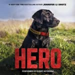 Hero by  Jennifer Li Shotz audiobook