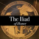 The Iliad of Homer by  Homer audiobook
