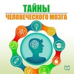 The Secrets of the Human Brain [Russian Edition] by  Natalia Epifanova audiobook
