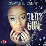 'Til It's Gone by  Dwayne S. Joseph audiobook
