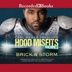 Hood Misfits Volume 3 by  Storm audiobook
