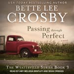 Passing through Perfect by  Bette Lee Crosby audiobook