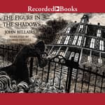 The Figure in the Shadows by  John Bellairs audiobook