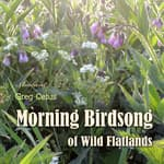 Morning Birdsong of Wild Flatlands by  Greg Cetus audiobook