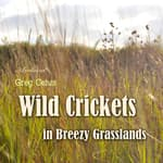 Wild Crickets in Breezy Grasslands by  Greg Cetus audiobook
