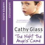 The Night the Angels Came by  Cathy Glass audiobook