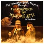 The Petaluma Radio Players Present: The Misadventure of the Injudicious Jurist by  Vince Stadon audiobook