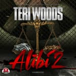 Alibi II by  Teri Woods audiobook
