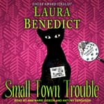 Small Town Trouble by  Laura Benedict audiobook