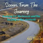 Scenes from the Journey by  Ann Tudor audiobook