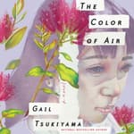 The Color of Air by  Gail Tsukiyama audiobook