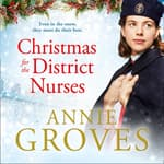 Christmas for the District Nurses by  Annie Groves audiobook