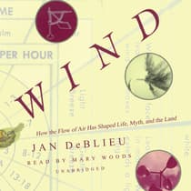 Wind by Jan DeBlieu audiobook