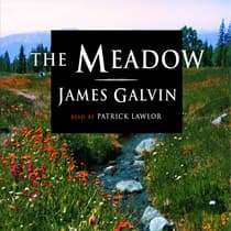 The Meadow by James Galvin audiobook