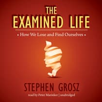 The Examined Life by Stephen Grosz audiobook
