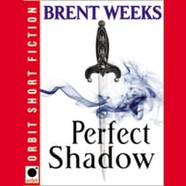 Perfect Shadow by Brent Weeks audiobook