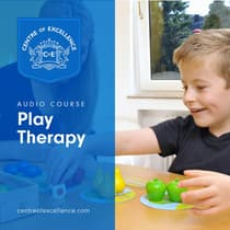 Play Therapy by Centre of Excellence audiobook