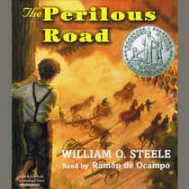 The Perilous Road by William O. Steele audiobook