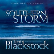 Southern Storm by Terri Blackstock audiobook