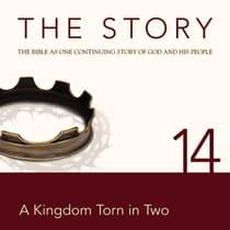 The Story Audio Bible - New International Version, NIV: Chapter 14 - A Kingdom Torn in Two by Zondervan audiobook