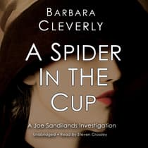 A Spider in the Cup by Barbara Cleverly audiobook