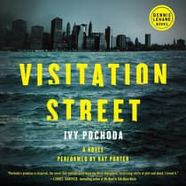 Visitation Street by Ivy Pochoda audiobook