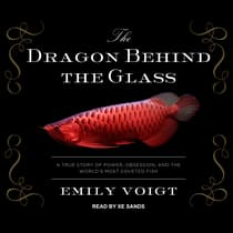 The Dragon Behind the Glass by Emily Voigt audiobook