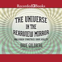 The Universe in the Rearview Mirror by Dave Goldberg audiobook