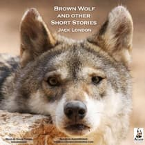 Brown Wolf, and Other Short Stories by Jack London audiobook