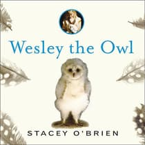 Wesley the Owl by Stacey O'Brien audiobook