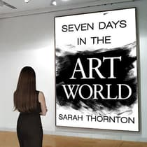Seven Days in the Art World by Sarah Thornton audiobook