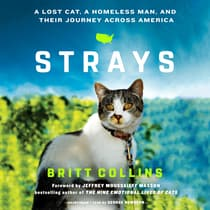Strays by Britt Collins audiobook