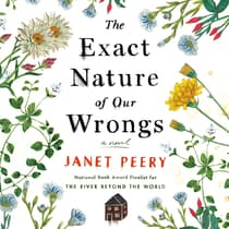 The Exact Nature of Our Wrongs by Janet Peery audiobook