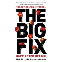 The Big Fix by Tracey Helton Mitchell audiobook