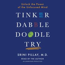 Tinker Dabble Doodle Try by Srini Pillay, M.D. audiobook