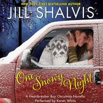 One Snowy Night by Jill Shalvis audiobook