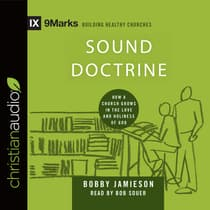 Sound Doctrine by Bobby Jamieson audiobook